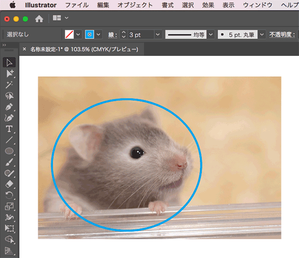 画像の前面に円を配置